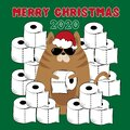 Merry Christmas 2020 - Cool cat in Santa`s hat with toilet papers, on green backround. Royalty Free Stock Photo