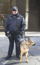 Nypd transit bureau k police officer and k german shepherd providing security on broadway during super bowl xlviii week new york Royalty Free Stock Photos