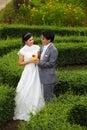 Nytt gift par i parken Arkivfoton