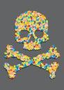 O crânio fêz a ââof um comprimido da cápsula Fotografia de Stock Royalty Free