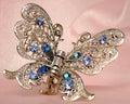 O gancho de cabelo da borboleta para o cabelo Foto de Stock Royalty Free