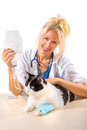 image photo : Sick cat treated with hope and joy from its veterinary