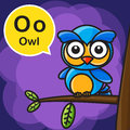 O Owl color cartoon and alphabet for children to learning vector