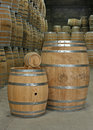 Oak barrels in cellar selection of different size Royalty Free Stock Photos