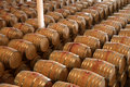 Oak barrels maturing red wine Stock Image