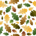 Oak leafs seamless pattern Royalty Free Stock Photography