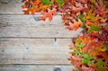 Oak leaves autumn on a old wooden background Royalty Free Stock Photography