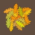 Oak leaves (vector) Stock Photo