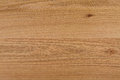 Oak natural wood texture Royalty Free Stock Photo