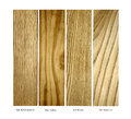 Oak pine ash elm real wood samples isolated for architecture and construction jobs of red quartered yellow brown and american on a Royalty Free Stock Photos