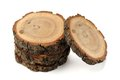 Oak split with growth rings and bark isolated Royalty Free Stock Photo