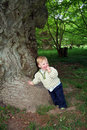 Oak tree and child Stock Images