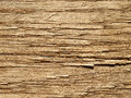 Oak wood grain Royalty Free Stock Photo