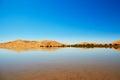 Oasis lake in Sahara desert, Merzouga, Africa Royalty Free Stock Photo