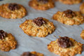 Oat cookies baked with a walnut Stock Images