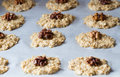 Oat cookies with a walnut Stock Image