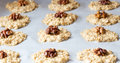 Oat cookies with a walnut Royalty Free Stock Image