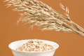 Oat ears and oat flakes a bunch of a white bowl of coarsely ground isolated on light brown background Stock Images