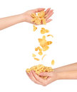 Oat flakes fall out of women's hands in other hands Royalty Free Stock Photo