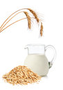 Oat flakes and milk Royalty Free Stock Photography
