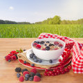 The oat flakes porridge with milk and berries molk on wooden table in garden Royalty Free Stock Photo