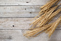 Oat On Wooden Background