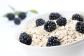 Oatmeal with blackberries Royalty Free Stock Photography