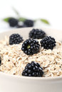 Oatmeal with blackberries Stock Image