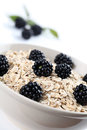 Oatmeal with blackberries fresh organic shallow dof Stock Photography