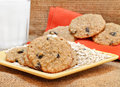Oatmeal raisin cookies with milk. Royalty Free Stock Photo