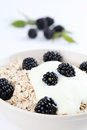 Oatmeal with yogurt and blackberries Royalty Free Stock Image