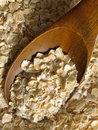 Oats #1 Royalty Free Stock Photography