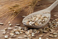 Oats and grain on cuisine Stock Photography