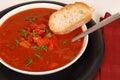 Obenliegende Ansicht einer Schüssel Tomate, roten Pfeffers und Basilikumsuppeesprits Lizenzfreie Stockfotos