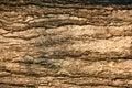 Oberfläche Stockfotografie