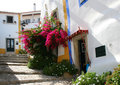 Obidos Street Royalty Free Stock Photography