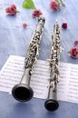 Oboe and Clarinet Summer Feeling Stock Image
