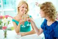 Occasion gorgeous girls drinking alcohol on some Stock Photo