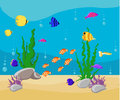 Ocean Cartoon underwater world with fish, plants, island Aquarium Fish set Royalty Free Stock Photo