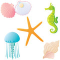 Ocean creatures. Royalty Free Stock Photography