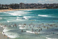 Ocean fun in manly summer the surf at sydney s beach Royalty Free Stock Photography