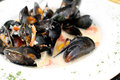 Ocean mussels dish cooked with garlic Royalty Free Stock Photography