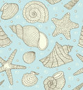 Ocean shells Royalty Free Stock Images