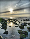 Ocean view in the netherlands north sea coast at sunset with rocks at low tide Royalty Free Stock Image
