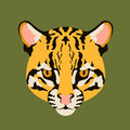 Ocelot cat face vector illustration style flat