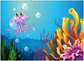 An octopus and the coral reefs under the sea illustration of on a white background Royalty Free Stock Images