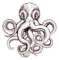 Octopus illustration Royalty Free Stock Photo
