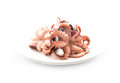 Octopus isolated white background dish cephalopods mollusks delicacies seafood menu marine delicatessen tentacle arm octopus Stock Images