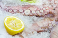 Octopus tentacles on ice fresh with sliced lemon displayed the fish market detail with shallow depth of field Royalty Free Stock Photography