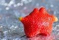 Odd shaped strawberry garden on aluminium foil Royalty Free Stock Photos